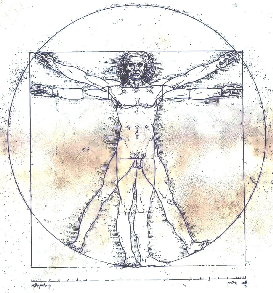 """Рисунок """"Витрувианского человека"""""""