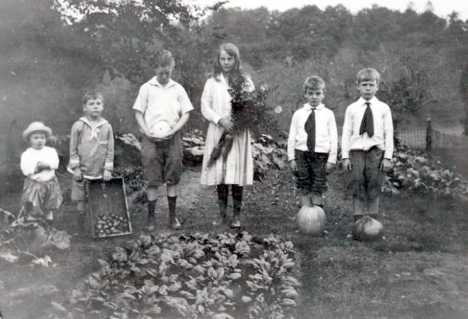 Грядки детей Рокфеллера